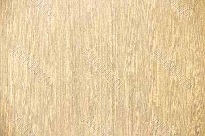 maple tree wood textured