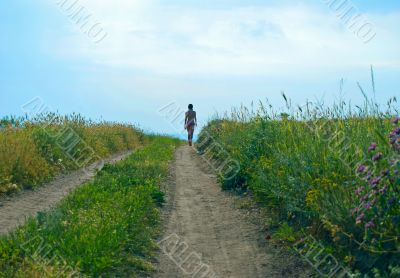 steppe path