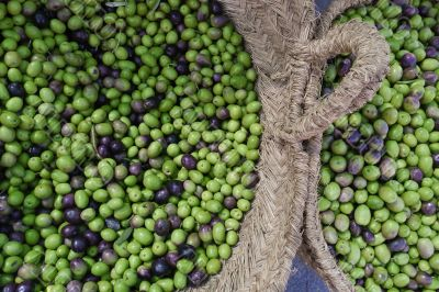 Fresh olives for sale at a Spanish market