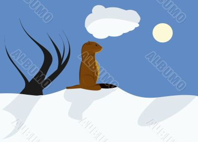 Sunny Groundhog day