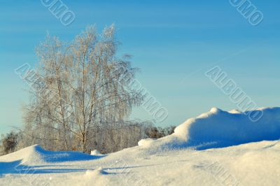 Winter day in the steppe
