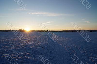 Snowed in landscape