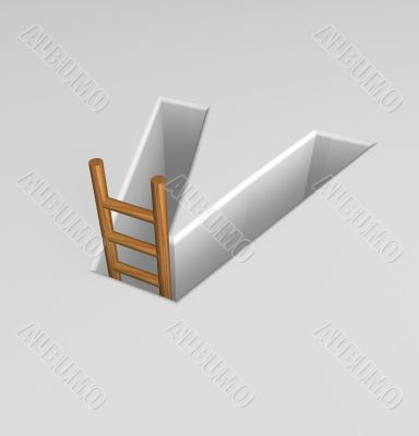 letter v and ladder