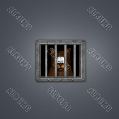 cat in prison
