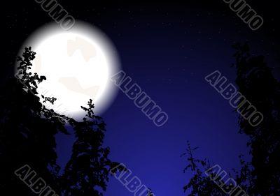 Night wood (eps 10)