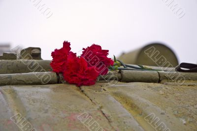 Red carnation flowers on the tank armor