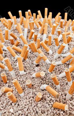 Cigarettes chaos vertical