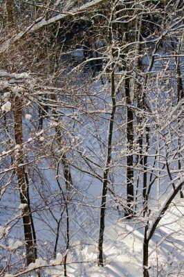 snowy landscape, winter in Russia