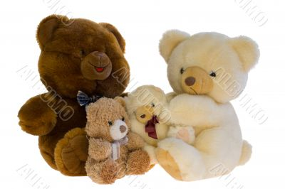 Family of toy teddy bears. Over white