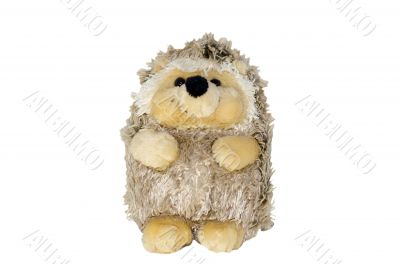 Isolate plush hedgehog