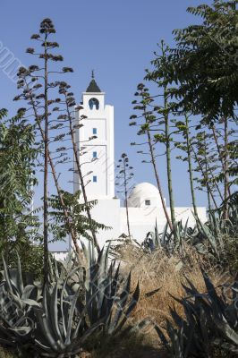 Sidi Bou Said Mosque, Tunisia