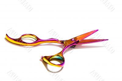 Professional Haircutting Scissors