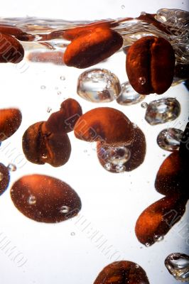Coffee beans in water