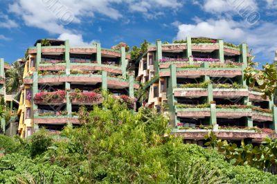 A cozy hotel in the jungle