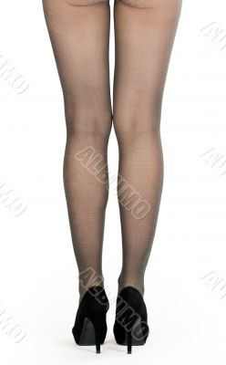 shapely female legs in pantyhose and shoes