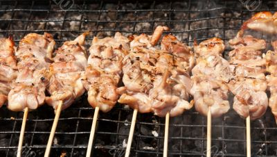 raw kebabs on the grate for grilling
