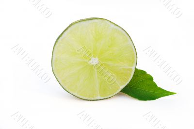 Lime Portion On White