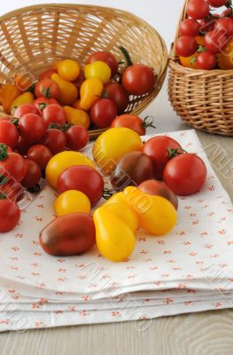 Scattered different varieties of tomatoes on a napkin