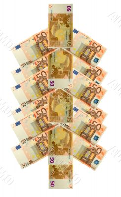 money tree concept from fifty euro banknote