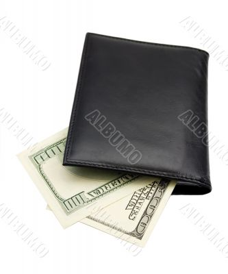 leather wallet of money dollar