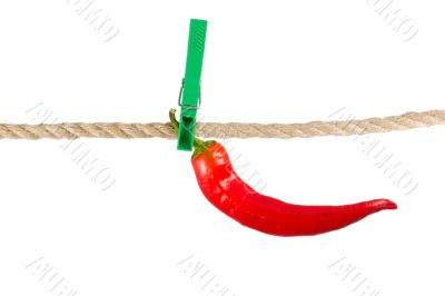 red pepper chile on clothes-peg rope