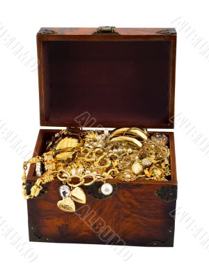 Treasure chest snake