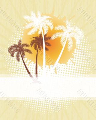 Summer background with grunge beach palms