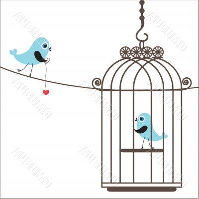 Cute  love birds in birdcage