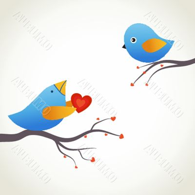 Cute blue birds on the love date