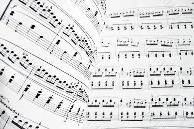 White musical score