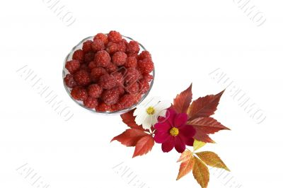 Berries raspberries in a glass vase with leaves and flowers