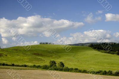 Hills in spring