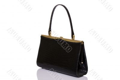 Lady black handbag
