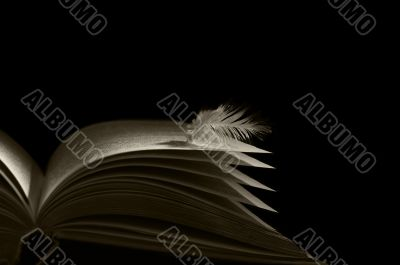 book angel skrezhal