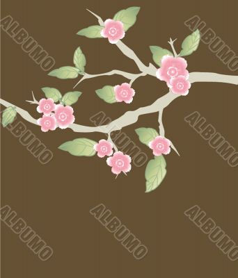 Blossom cherry - Greeting Card