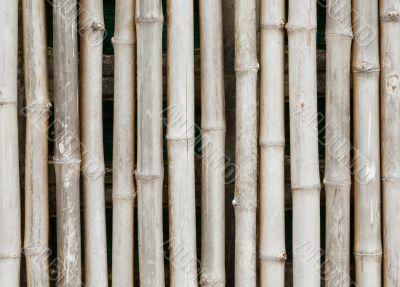 thai style bamboo fence