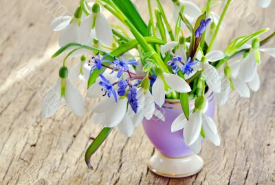 Beautiful bouquet snowdrops in a vase on woody background