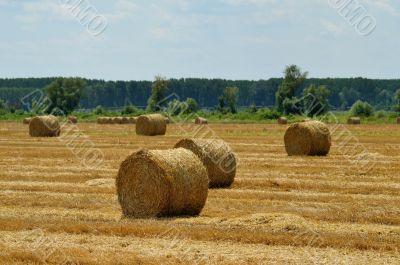 Haystack on field