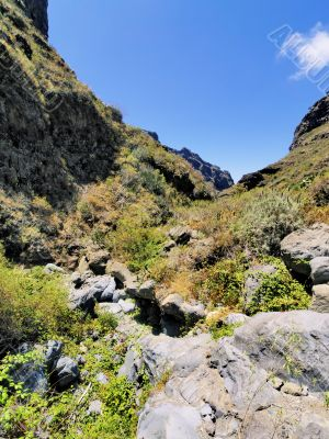 Hell`s Gorge on Tenerife