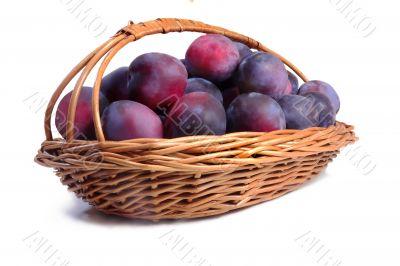 Basket full of ripe plums