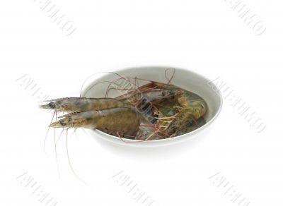 raw fresh shrimps