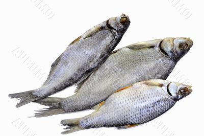 Salted and dried river fish on a white background.
