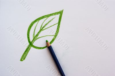 Hand drawing leaf with pencil