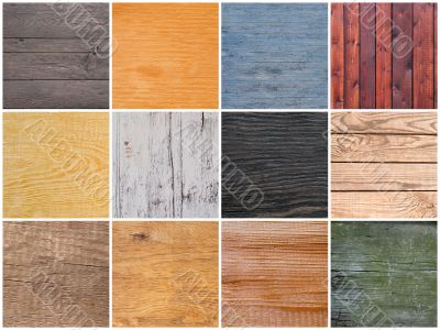 Set of textures of wood