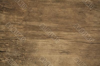 Texture of the old wood