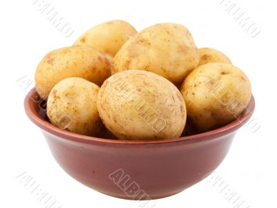 Young potatoes in a clay bowl