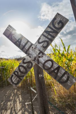 Antique Country Rail Road Crossing Sign Near a Corn Field