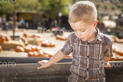 Sad Boy at Pumpkin Patch Farm Standing Against Wood Wagon