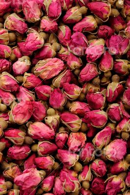 Closeup of roses for tea background