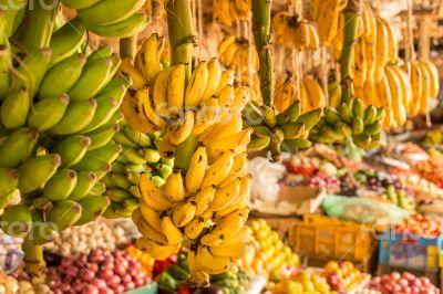 Banana bunch at a local market